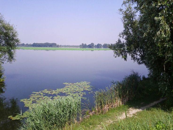 Lago Superiore, Mantova