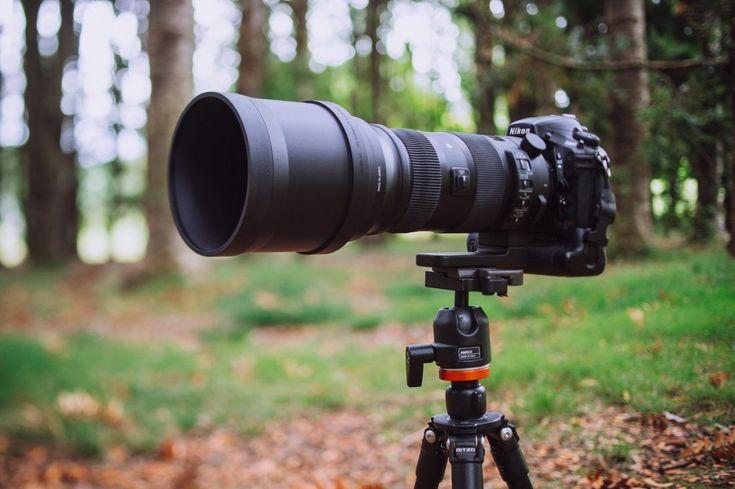 Best Wildlife & Sports Lenses for Canon EOS 77D - Buying Guide 2017   https://dslrcamerasearch.com/best-wildlife-sports-lenses-canon-77d/ The Canon Electro –Optical System, otherwise known as Canon EOS, is a device that has an autofocus SLR (Single- Lens Reflex) Camera. The Canon EOS s...  https://dslrcamerasearch.com/best-wildlife-sports-lenses-canon-77d/