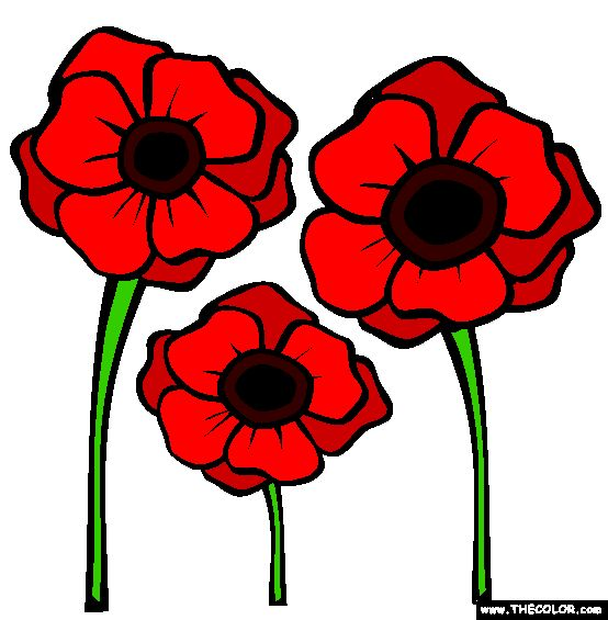 Remembrance Day Online Coloring Pages Page Magones - Poppies to remember coloring page