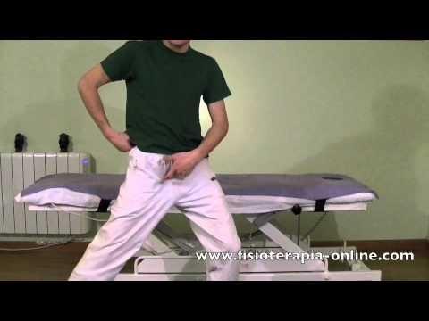 Estiramiento de los músculos aductores.