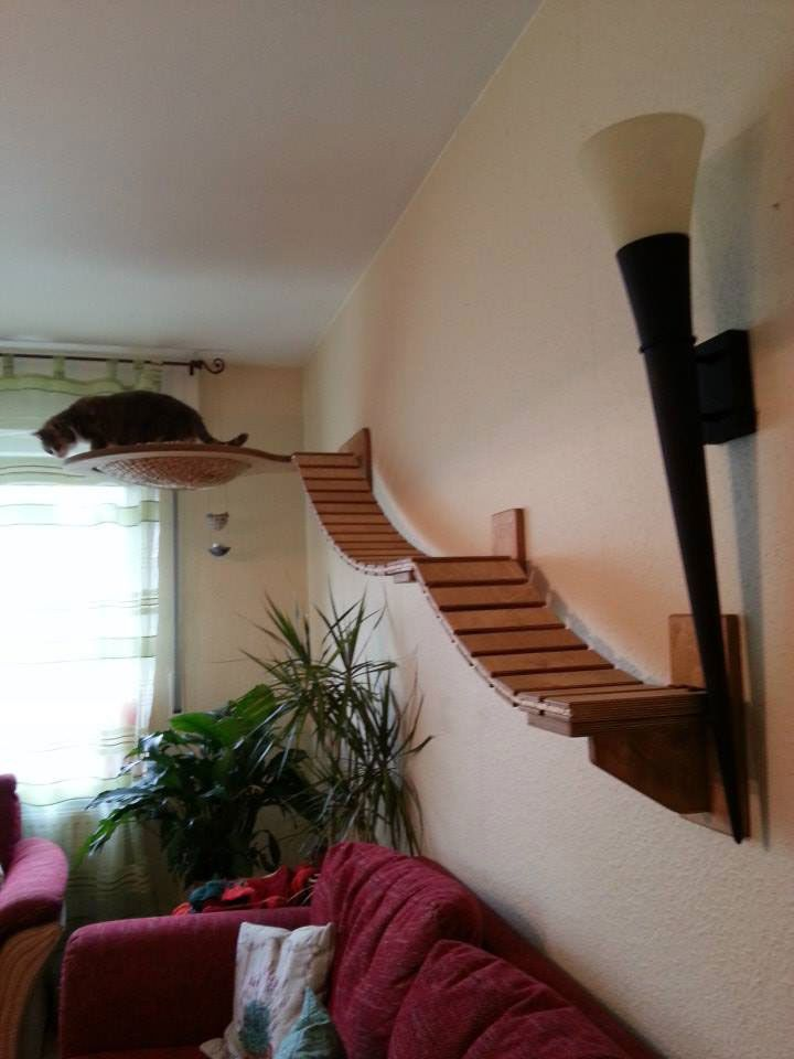 Wow...check out the feline jungle gyms this guy makes.