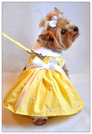 Dog Dress. Yellow daisy dog dress at Doggie Clothesline. $31.95 http://www.doggieclothesline.com/dog_dresses #dogdress #cutedogclothes
