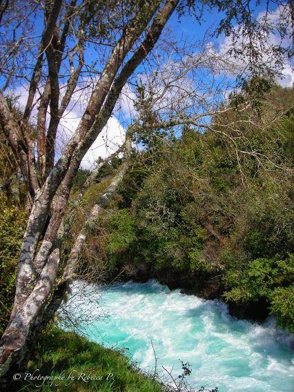 Huka Falls rapids in New Zealand  #hukafalls #newzealand #aotearoa #rapids #whitewater #nature