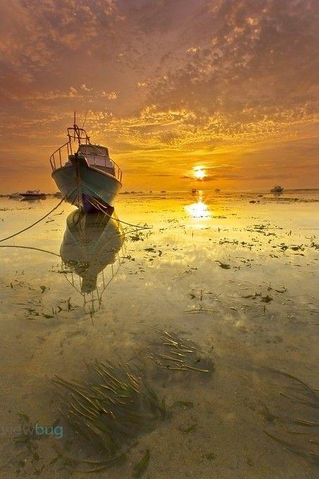 """BrightnessDay"" by chokysinam! Find more inspiring images at ViewBug - the world's most rewarding photo community. http://www.viewbug.com/photo/39608121"