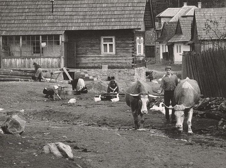 Martin Martinček - Vyháňanie volov na pašu-1962–1968