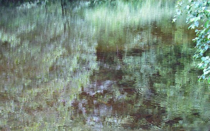 Reflections in green. Photo: Åse Margrethe Hansen