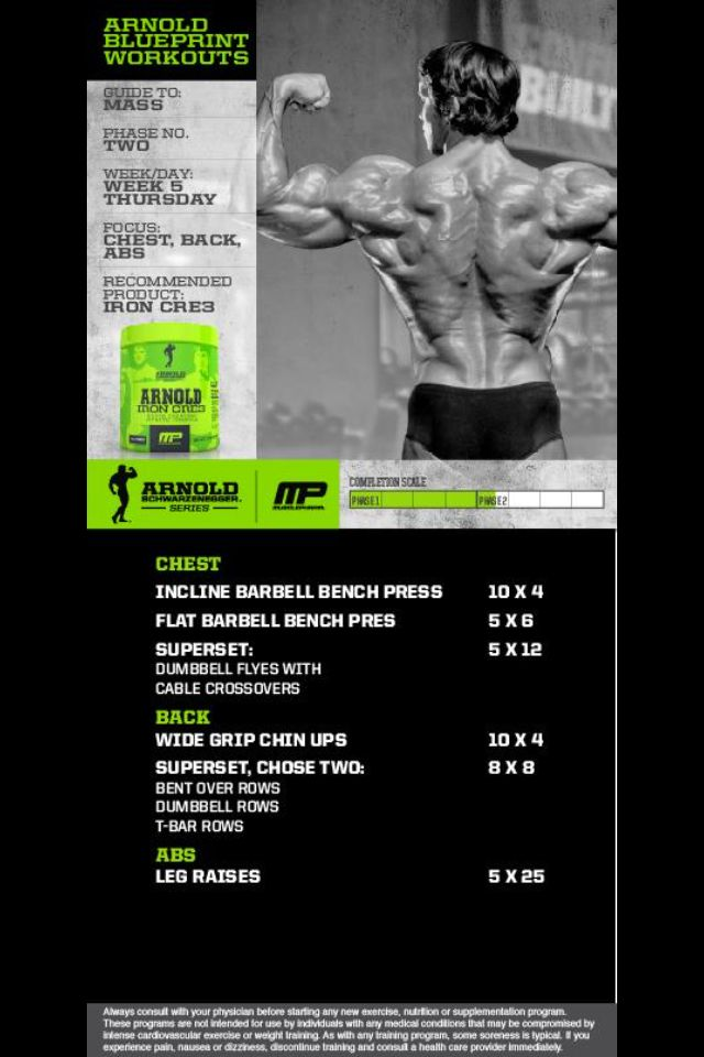 36 best Chest images on Pinterest Exercise routines, Work outs and - new arnold blueprint ebook