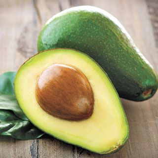 """The only true dwarf Avocado tree, Wurtz or """"Little Cado"""" is the perfect patio tree for any climate. Bring it indoors before first frost and enjoy its dark green fruits beginning just a year or two after planting!"""