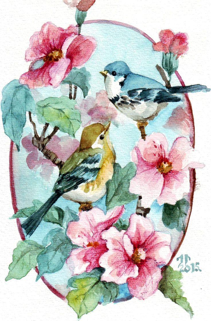 акварель птицы цветы картинки упрям