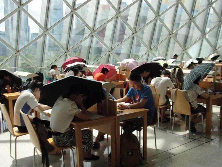 陽当たりを良い図書館を作った結果、中国人が取った結果www