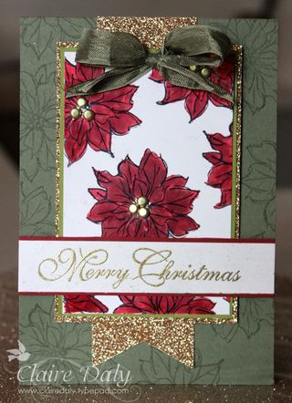 Claire's September Festival of Getting Inky Day 11: Watercolour Winter with some Christmas bling ... - Stampin Up Australia: Claire Daly Independent Demonstrator Melbourne, Victoria