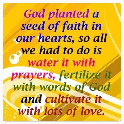 Seed of faith: Quotes About Love, Faith In God, God Things, Bible Quotes, Google Search, Mustard Seeds, Love Quotes, Weights Loss, Inspiration Quotes