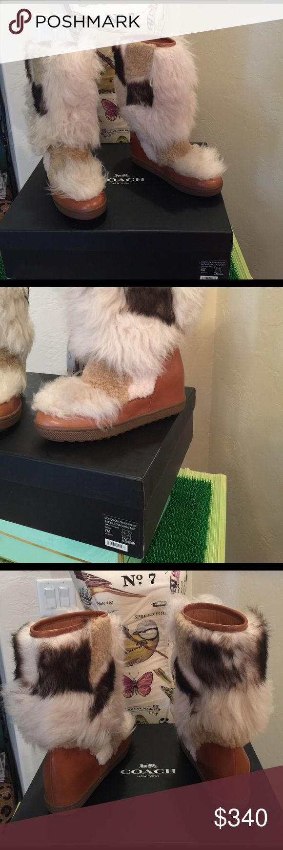 "Coach Sheep Skin Leather Boots Coach ""Morton"" Sheepskin and Tan Leather Boots, new Never Worn, statement piece, 12"" high, 2"" wedge, calf 12 1/2"" , comes with Coach box Coach Shoes Winter & Rain Boots"