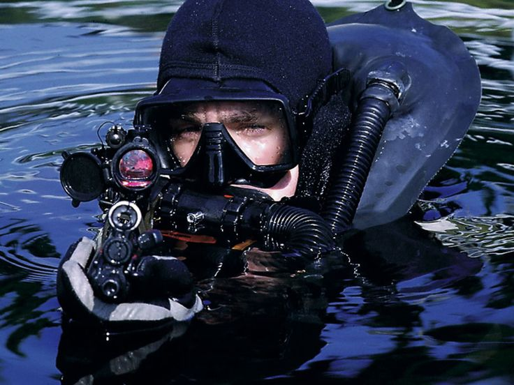 Why didn't the Previous admin give the Navy Seals any special assignment like this admins has?
