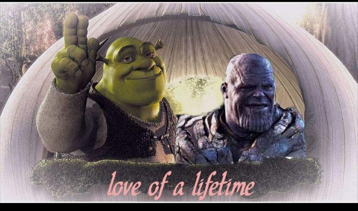 Marriage Shrek Love Of A Lifetime Marriage