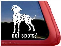 Miniature Dalmatians - Got Spots? Window Decal Sticker. Get it at this link: http://www.nickerstickers.com/Got_Spots_Miniature_Dalmatian_Dog_Decal_Sticker_p/dc927sp2.htm #dalmation #gotspots #spots #dog #window #decal #nickerstickers