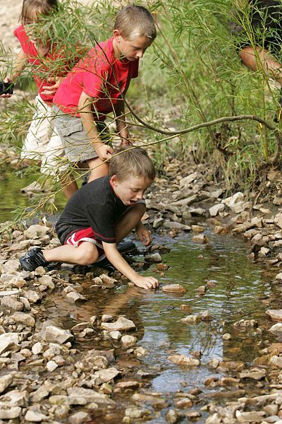 3 Fun and Educational Outdoor Summer Activities- see Nature Trax at beachandnatureco.com