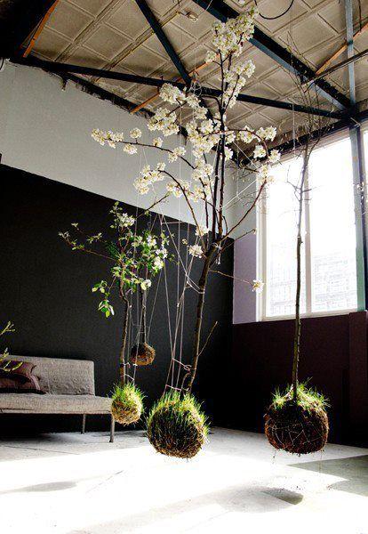 Hanging string gardens!