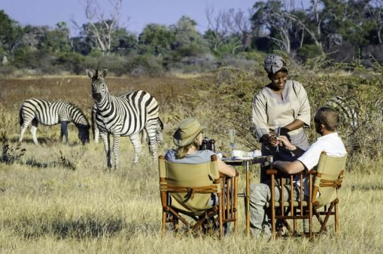 Some private time in the bush at Mombo Camp (Okavango Delta, Botswana). Any questions: info@gondwanatoursandsafaris.com - we reply within 24h!