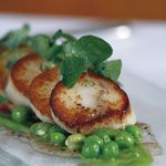 Seasonal Recipe of the Week – Seared scallops with peas, broad beans, mint and truffle, by Tony Fleming