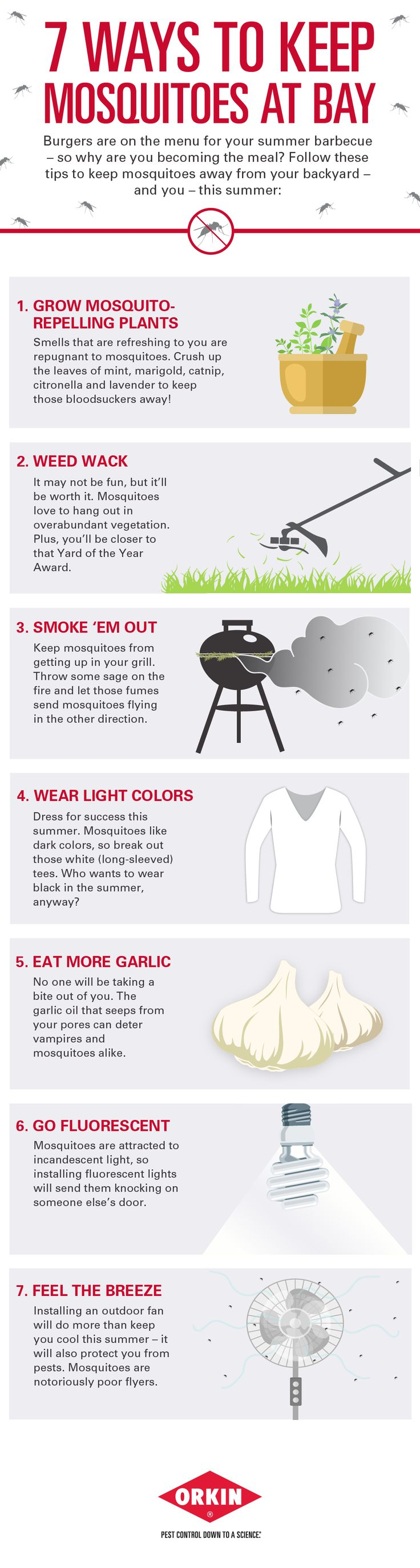 31 best mosquitoes images on pinterest mosquitoes pest control