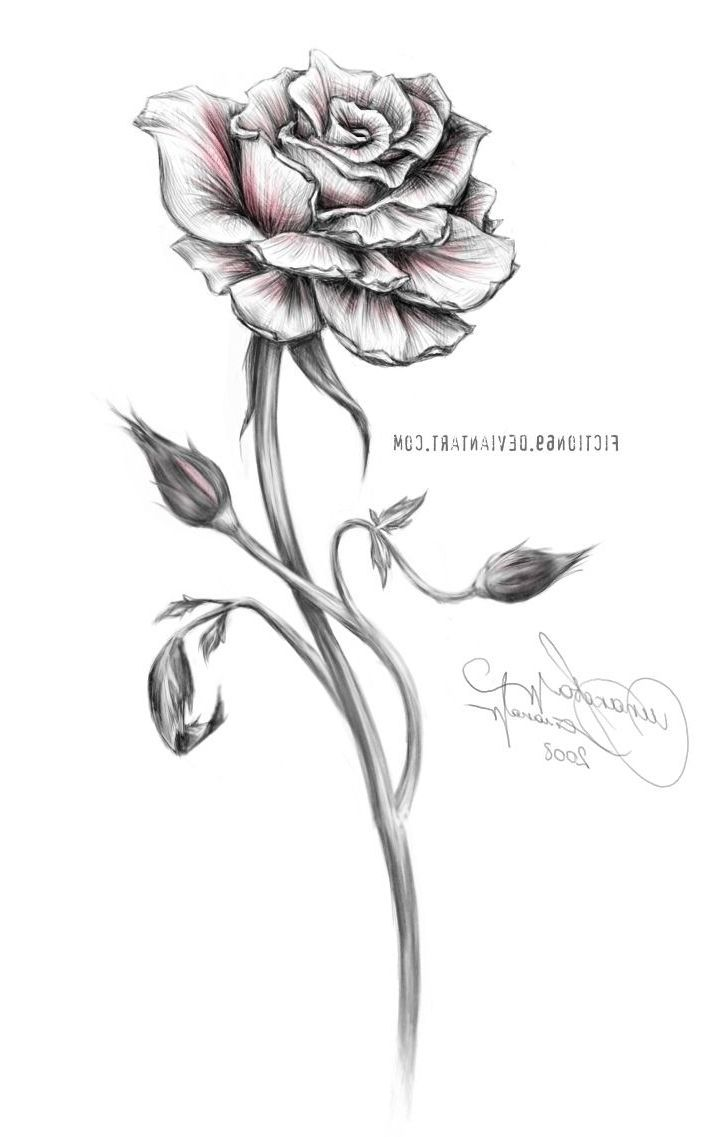 Cool Designs Of The White Rose Small Rose Tattoo Designs Best Tattoo Design Tattogirl White Rose Tattoos Black And White Rose Tattoo Rose Tattoo Design