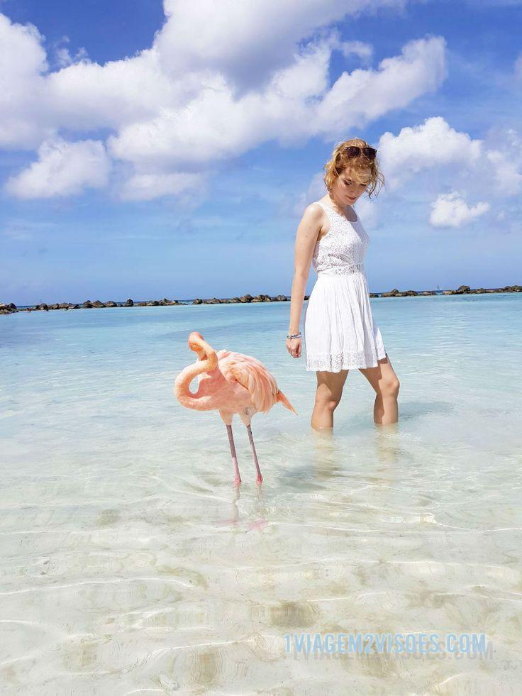 Dá pra fazer uma viagem econômica pra esse paraíso? E onde se hospedar em Aruba? Existe vida além de Palm Beach? Vale a pena ir?  Compartilhando todas as dicas e relatos de Aruba no blog! A ilha mais feliz do Caribe merece uma visita, e você merece mais ainda conhecer aquele mar incrivelmente azul, aquele povo incrivelmente alegre, os flamingos cor de rosa incrivelmente lindos na Flamingo Beach da Renaissance Island, a Natural Pool, o Bon Bini Festival, Donkey Sanctuary e tantas outras…