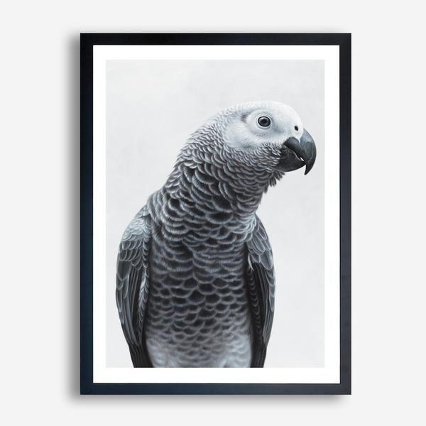 """""""African Grey Parrot"""" Art Print By The Print Emporium    THEPRINTEMPORIUM.COM.AU    #ThePrintEmporium #grey #gray #bird #art #poster #africanparrot #wallart #white #scandinavian #beautiful #painted #painting #australia #artwork #artprint #allwhite #interior #wallart #decor #parrot"""