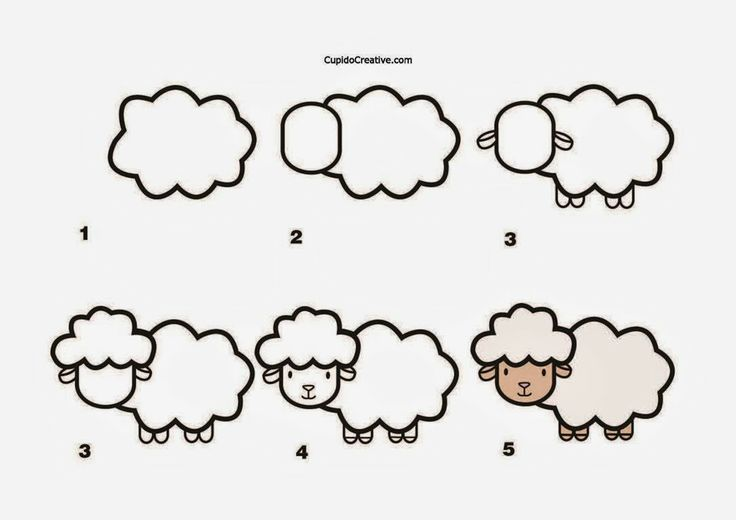 kerajinan anak TK/SD, langkah/cara menggambar domba & mewarnai
