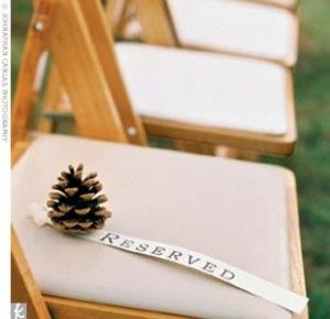 reserved seating pine cone wedding aminamichele.com amina michele