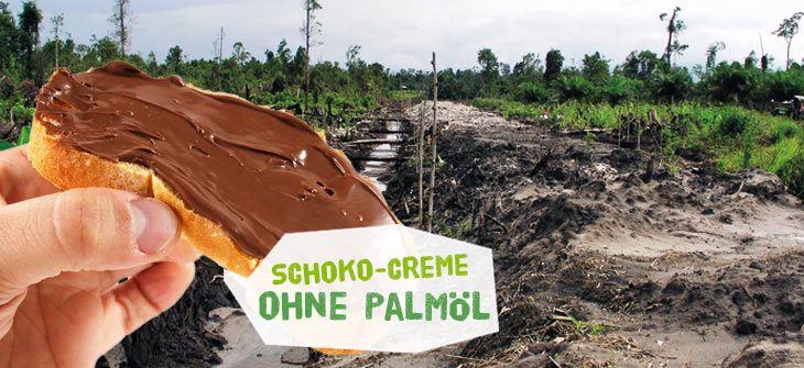 Palmöl-freie Schokocreme: Der Test - Abenteuer Regenwald. Mit 2 tollen Rezepten!