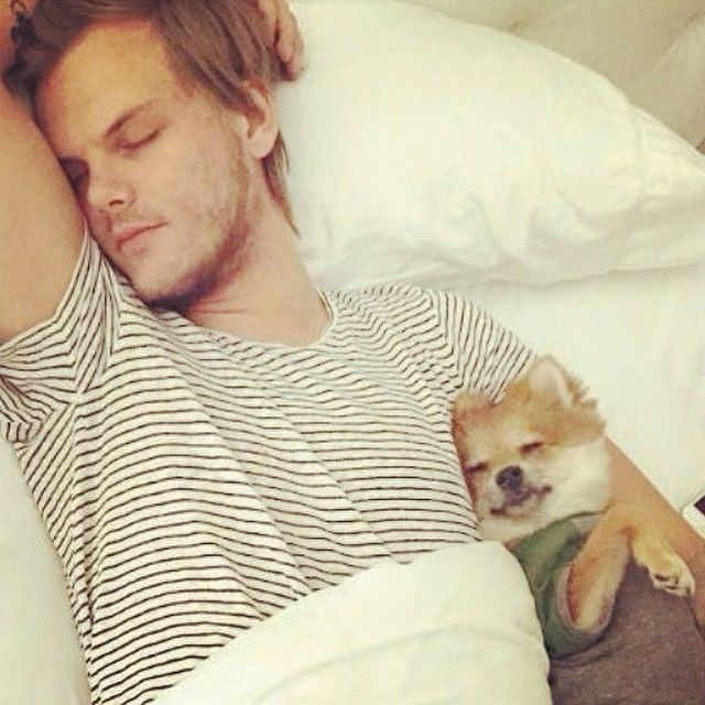 Sleeping with daddy :) @oliverthefox @avicii <3