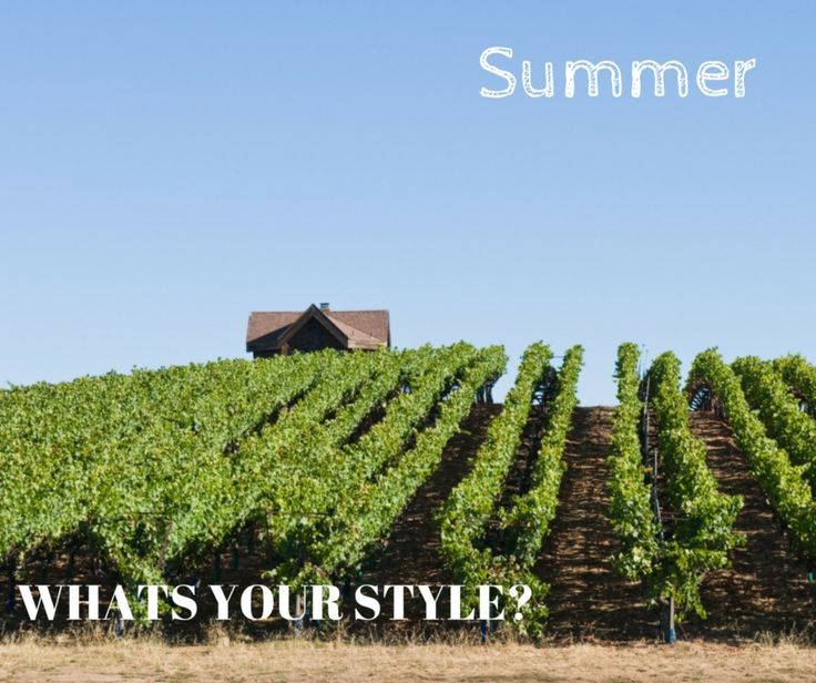 What's your wedding style!? Are you a summer couple! We love a relaxed winery wedding in summer - the vines are in full bloom, blue skies and hot days. #weddingtips #weddingadvice