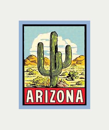 Arizona decal arizona sticker arizona cactus sticker
