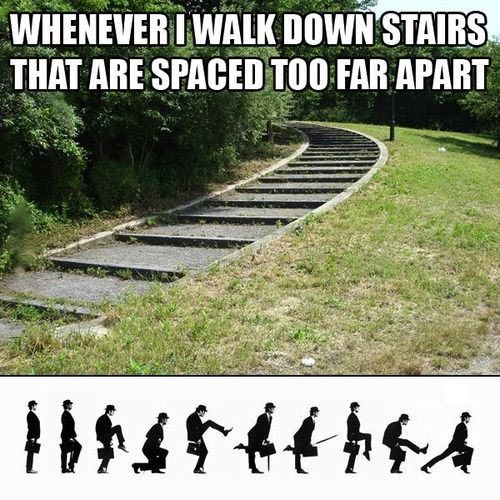 Walking down the stairs… in 2018 | LOL | Pinterest | Funny, Funny pictures and Lol