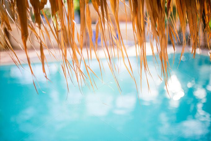 Check out Swimming pool under umbrela by odpium on Creative Market