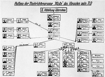A German diagram of the structure of the Warsaw section of an illegal Polish underground intelligence organization named 'Coast', circa 1943. A photo from an album documenting German atrocities in occupied Poland during World War II. The album was compiled by SS Oberscharfuhrer Hermann Baltruschat (1907 - 1945). Date of reproduction: 1979. Pin by Paolo Marzioli