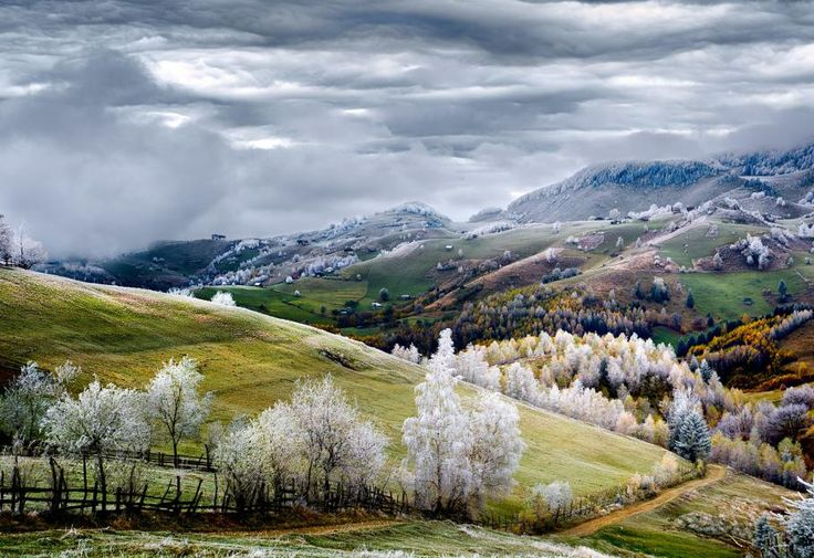 La nature couverte de givre à Pestera, dans la région de Brasov, en Transylvanie (Roumanie). EDUARD GUTESCU
