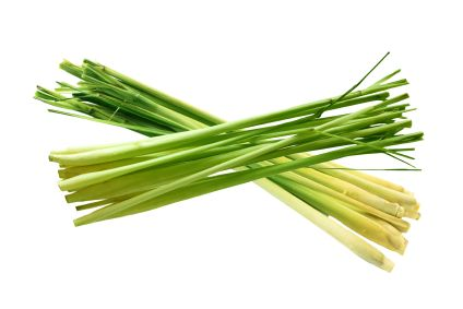 How to grow lemon grass. Get it from the International farmers market (way less expensive) stick it into a glass with water to root, and plant! Keeps insects away too!