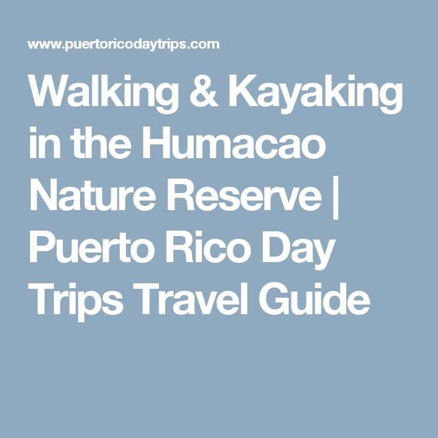 Walking & Kayaking in the Humacao Nature Reserve | Puerto Rico Day Trips Travel Guide