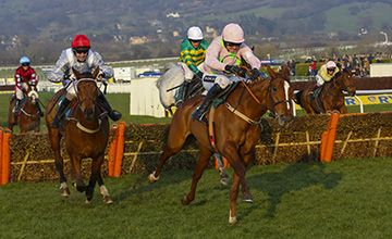 Mullins hopeful Limini can follow Quevega example  https://www.racingvalue.com/mullins-hopeful-limini-can-follow-quevega-example/