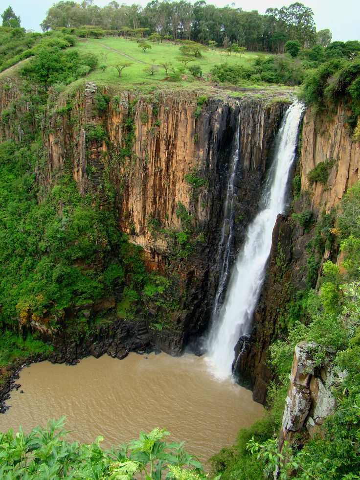Day 5: the Howick Falls