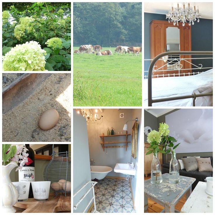 Erg leuk vakantiehuis (max 7 personen) op de boerderij, in de buurt van de Beekse Bergen.