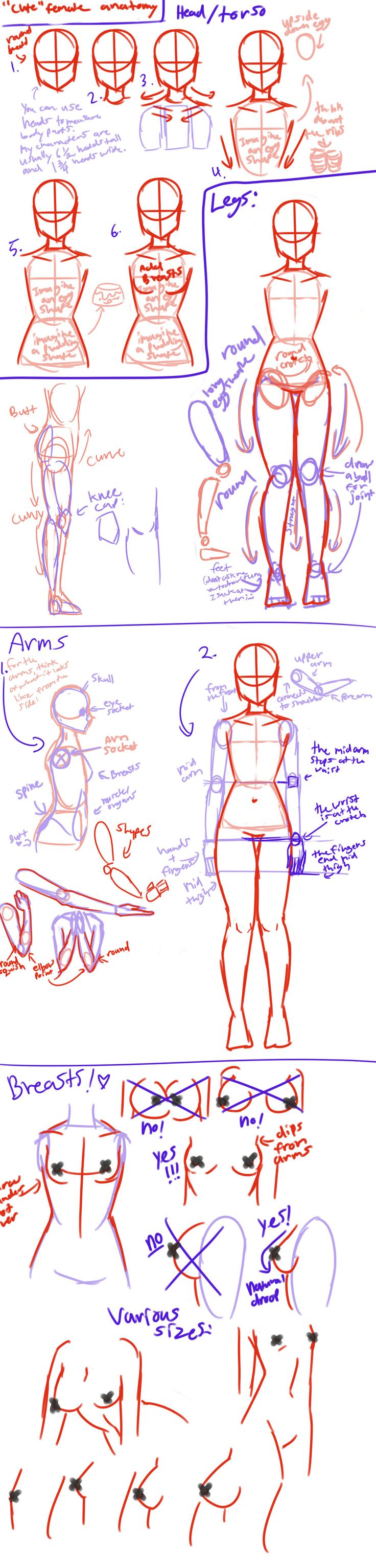 """Cute"" female anatomy tutorial by AngelicCarrot. Always looking for good body tutorials, especially since I'm bad with proportions!"