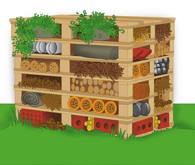 Insect hotel design | How to make a home for insects in your garden | Hen and…