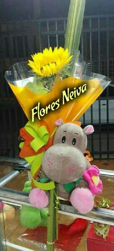 Flores neiva 3153335017
