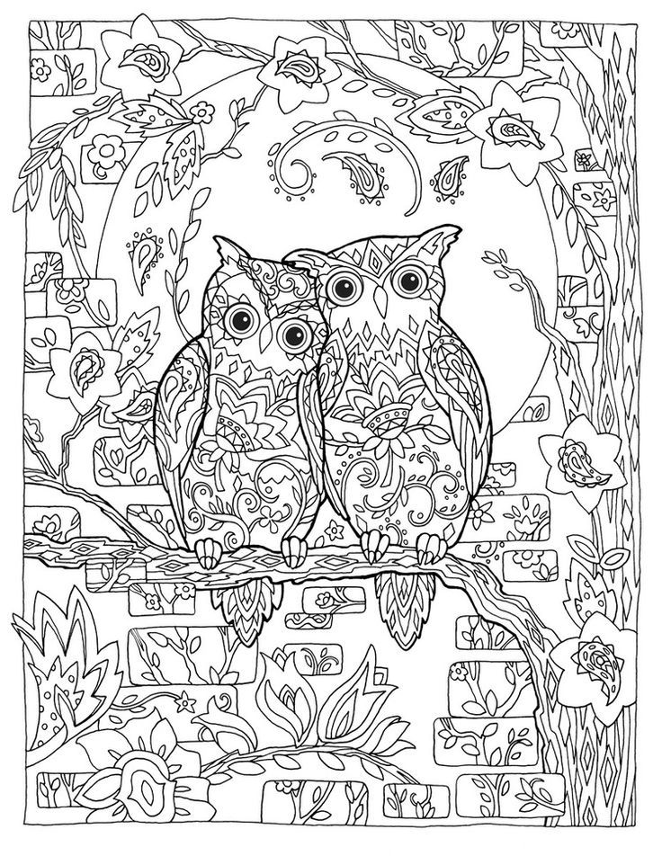 in addition  likewise crab 2 coloring page in addition  in addition  furthermore 3a3a7ec347da3699cd4e48e008285fca as well  further  as well 91KfKIJ02tL besides  moreover . on sea birds adult coloring pages