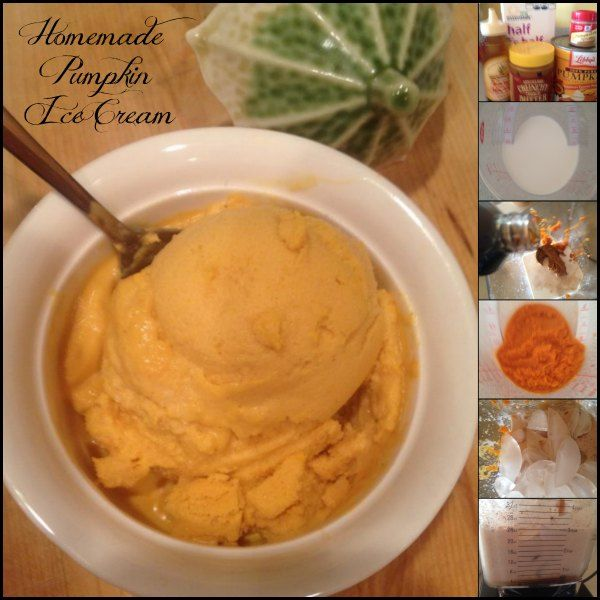 Pumpkin Ice Cream RecipeHomemade Pumpkin, Things Pumpkin Food, Recipe Homemadepumpkinicecream, Ice Cream Recipes, Homemade Ice Cream, Blenders, Icecream Pumpkin, Healthy Pumpkin Ice Cream, Madame Deals