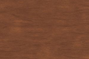 Back Deck 9/2014 Stain Color SW 3507 Riverwood from Sherwin-Williams
