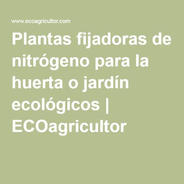 Plantas fijadoras de nitrógeno para la huerta o jardín ecológicos | ECOagricultor